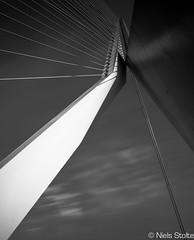 Architectural Highlight / Rotterdam, the Netherlands (Niels Photography) Tags: bridge holland netherlands monochrome architecture canon swan rotterdam long exposure ben nederland architectural van highlight erasmusbrug berkel erasmusbridge nd110