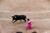100604_Corrida Toros Ventas_047 (Tranbel) Tags: toros ventas elfandi