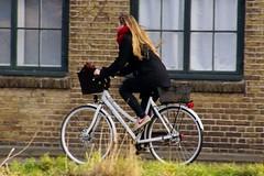 I want to ride my bicycle (osto) Tags: bike bicycle denmark europa europe sony bicicleta zealand bici scandinavia danmark velo vlo slt rower cykel a77 sjlland osto alpha77 osto december2014 fietssykkel
