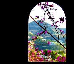 Through the window #dailyshoot #Altea #Spain (Leshaines123) Tags: holiday colour field spain altea depth contrasts benidorm facebook dailyshoot apertments tumblr vividandstriking pinterest leshaines leshainesimages