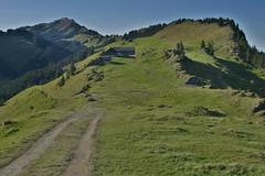Weg zur Htte (tauven) Tags: mountain cabin path htte