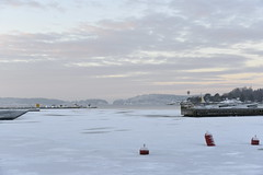 White and grey in Son (Ingunn Eriksen) Tags: winter snow norway vestby akershus