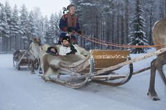 5J4A1519 (DAVIDE CONGIA photography) Tags: winter aurora camper inverno zero viaggio sotto finlandia in lapponia boreale svezia finlandese