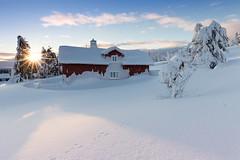 Snow Covered Log Cabin at Sunset (Rob Kints (Robk1964)) Tags: winter snow norway norge lillehammer norwegian noorwegen sjusjen 2015 sjusjoen opplandfylke hedmarkfylke