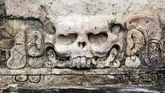 La calavera del Templo de la Calavera - Palenque (Daniel Salinas Crdova) Tags: art archaeology mxico mexico arte maya mayan palenque chiapas mayas arqueologa