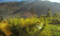 a Machu Picchu 36