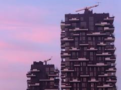 Tramonto urbano (La minina) Tags: italy milan skyscraper italia tramonto milano grattacielo portanuova boscoverticale