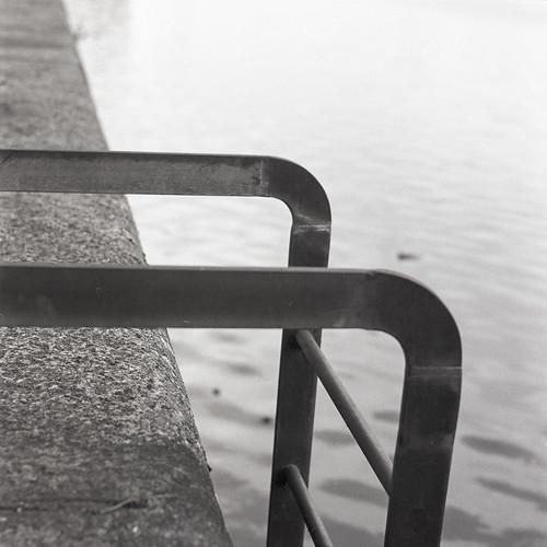 reedspondweed 6x6 squareframe 400tx pond mamiya dock ladder tlr mamiyac330f mediumformat rotherhithe water concrete blackandwhite trix homedev