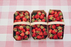 Strawberry Picking 🍓 (cassandra.frater) Tags: red summer hot beautiful barn fun strawberry picnic pretty farm strawberries organic activity picnictable strawberrypicking