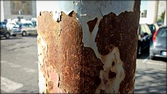 From here to eternity? (Lookatmy Back ( aka DarthIgorMortis )) Tags: rust iron decay rusty corrosion ruggine screpolature