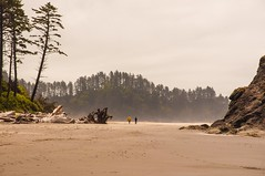 The Beach to Themselves 2nd Beach Washington Coast (figllano) Tags: elements people beach sand fog drizzle walk outdoors