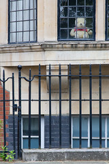 Pooh (SReed99342) Tags: london uk england window pooh bear