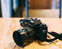 lovely new lens (i am not sorry) Tags: f14 voigtlander 58mm nokton slii