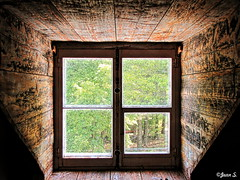 Lumire (Jean S..) Tags: light window trees indoor outdoor frame wall shadow green wood