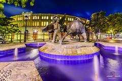 Plaza de toros del Puerto de Santa Maria. (Antonio Camelo) Tags: plaza night lights luces noche nikon bull toros