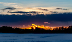 Roava (Jori Samonen) Tags: sunset winter field snow trees clouds viikki helsinki finland