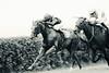 horserace (feldweg) Tags: fight galopp doberan ostseemeeting baddoberan rennen pferderennen horses horserace galope pferd pferde cheveaux hest koni cballo cavallo run speed