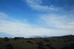 downslope Haleakala and moon (heartinhawaii) Tags: maui kula haleakala upcountry hawaii moon mahina nature field bigsky sky mauiinnovember shotfromcar canons90 landscape