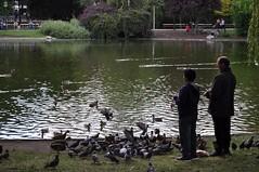 sDSC_0033 (L.Karnas) Tags: wien vienna wiede    viena vienne sommer summer 2016 stadtpark park