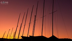 Red sails in the sunset (core_personal_training) Tags: australia nsw centralcoast gosford boat sailing yacht water sea ocean harbour sun sunset sunrise sky landscape nature