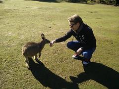Josh and Kangaroo