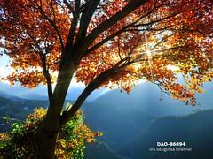 DAO-86894 (Chen Liang Dao  hyperphoto) Tags:   taiwan