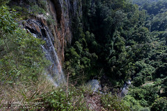 Purlingbrook Falls (J.P. Lawrence Photography) Tags: 2016 australia2016 spring2016 travel australia queensland springbrook springbrooknationalpark waterfall