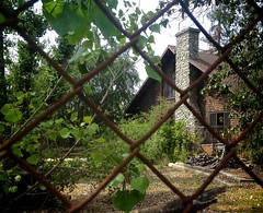 Throw your heart over the fence and the rest will follow. (Karol Franks) Tags: rusty chainlink fence house bungalow riverrock overgrown iphone yard old vintage craftsman