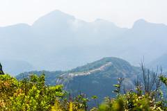 DSC_6033 (sergeysemendyaev) Tags: 2016 rio riodejaneiro brazil pedradagavea    hiking adventure best    travel nature   landscape scenery rock mountain    high   summit green