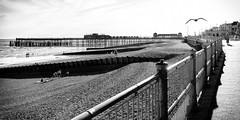 (Femme Peintre) Tags: hastings england pier strand meer himmel schwarzweis