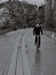 Bird and biker (Per sterlund) Tags: bnw bw baw svartvitt street streetphotography photography gatufoto stockholm sverige sweden streetphoto biker bird monochrome mono 2016 city rainy autumn panasonic gx8 sdermalm