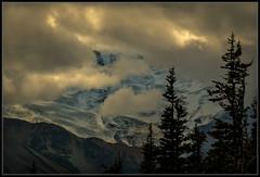 Mmmm Mountain Light (Ernie Misner) Tags: mountrainier mountrainiernationalpark sunrise sunrisepoint erniemisner nikon d800 nik lightroom capturenx2 f8andlettherebelight