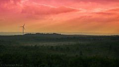 Haard - Sonnenuntergang (Christian Passi - Steher82) Tags: sunrise sonnenuntergang haard wald landschaft landscape himmel outdoor feld nebel frog windrad sunset windkraftanlage