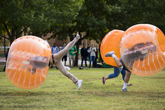 1013 Bubble Soccer player slam into each other and go flying (movies05) Tags: denton northtexas project365 unt university bonk bubblesoccer crash flying grass inflatable orange smash students texas unitedstates us