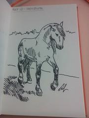 Day 12 of my sketch streak (# annola) Tags: disegno dessin zeichnen cavallo bw penna tratteggio cheval horse pferd