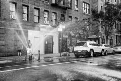 MircK - Chelsea Hydrant (imNOTaPh) Tags: chelsea chelseamarket newyork manhattan street streetphotography dog pet blackwhite bw nikon d3100 mirck jeep bricklane volcom volcomwear firehydrant openhydrant