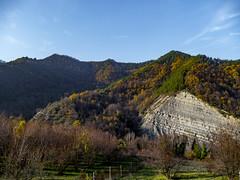 Purocielo (Massimo Saviotti) Tags: flickr collina colline hill hills landscape landscapes paesaggi paesaggio panorama sightseen vista