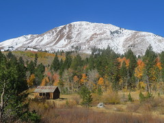 Hope Valley, Heavenly Solitude (claypeoples) Tags: landscape scenery fall foliage autumn color mountain aspen california west cabin secluded solitude serenity snow