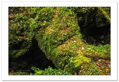Dormant titan (Horia Bogdan) Tags: titan rock old myth mythology carpathian mountain romania transylvania horiabogdan