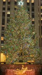 2014 Rockefeller Center Christmas Tree, New York City (jag9889) Tags: nyc newyorkcity sculpture usa holiday ny newyork tree statue bronze greek unitedstates manhattan unitedstatesofamerica rockefellercenter christmastree midtown nightscene legend prometheus rockefellerplaza 2014 jag9889 20141219