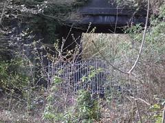 The Croxley Green branch in 2008 (TheStanstedTrainspotter) Tags: abandoned overgrown weeds track branch br transport tracks rail railway disused britishrail hertfordshire watford grandunioncanal nse watfordjunction croxleygreen networksoutheast branchline watfordwest watfordstadium