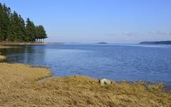 Looking east from Fanny Bay, BC (shireye) Tags: nikon bc britishcolumbia fullframe ff fannybay d610 24120
