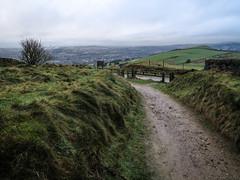 Windswept Hilltop (Quadripartite Landscape) Tags: uk england nature manchester united hill kingdom pike mossley hartshead