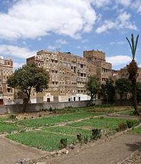 Sana'a (EleanorGiul ~ http://thevelvetrocket.com/) Tags: yemen sanaa イエメン iémen йемен justinames 也门 httpthevelvetrocketcom เยเมน