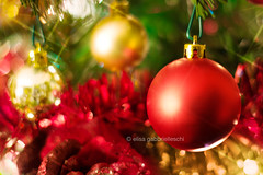 Buon Natale (Elisa Gabbrielleschi) Tags: xmas red holiday tree closeup ball happy 50mm gold lights nikon f14 balls iso luci albero abete natale rosso palle oro buon feste dettaglio marrychristmas buone festeggiare d7100 approvato helloelisagabriel