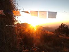 Sunrise Prayer (wisteria.inthewood) Tags: nepal prayer flags himalayas wisteriawood