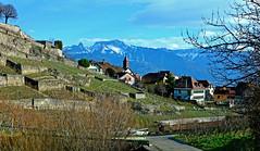 Village de Rivaz (Diegojack) Tags: villages vignes montagnes naye vaud lavaux jaman rivaz fabuleuse