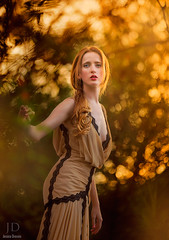 Autumn Light ({jessica drossin}) Tags: autumn light portrait woman fall texture leaves photography golden photo dress natural bokeh redhead redhair actions overlays jessicadrossin wwwjessicadrossincom jdbeautifulworldcollection