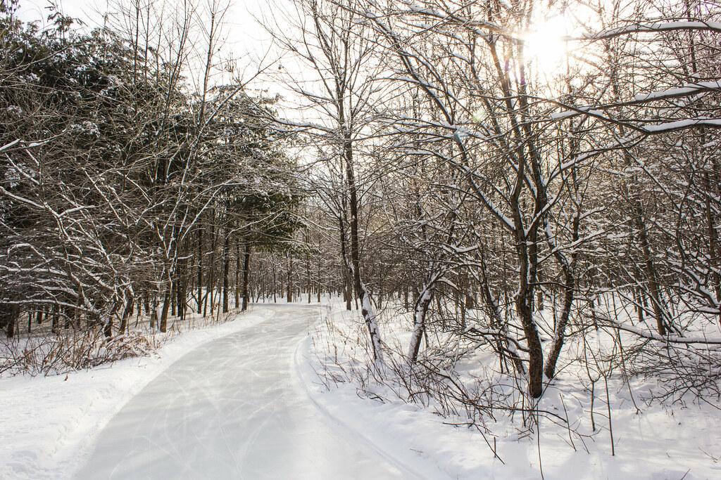 Sentier de glace - Ice path - Bois de Belle-Rivière