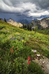 Lake Ann - Maple Pass Loop Hike (i8seattle) Tags: wildflowers northcascades lakeann stormyskies maplepass maplepassloop